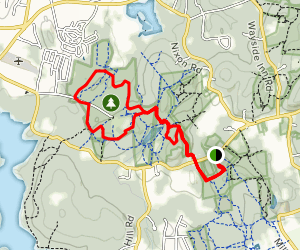 Red Tail Trail to Backpacker and Bear Paw Loop Map
