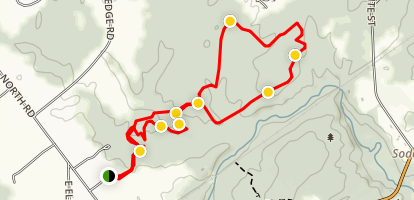 Bear, Chipmunk and Moose Trail Loop Map