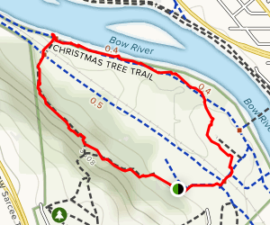 Christmas Tree Trail Loop Map