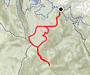 Suncrest Trail Map