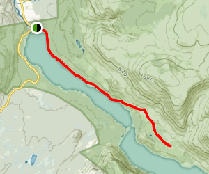 Trout River Pond Trail Map