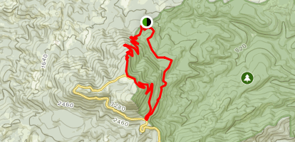 Marys Peak East Ridge and North Ridge Loop Map