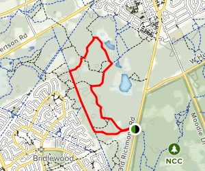 Stony Swamp Loop Map