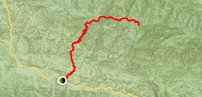 Reyes Peak via Chorro Grande Trail  Map