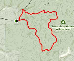 Coy Bald Trail Map