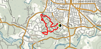 Needham Town Forest Trail Map