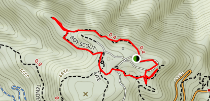 Boy Scout Trail and May's Point Map