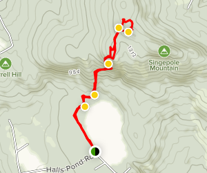 Hall Pond and Singepole Mountain Trail  Map