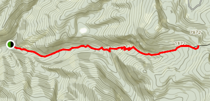 Willow Creek Trail to Saddle Map