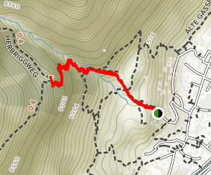 Zermatt to Edelweiss Map