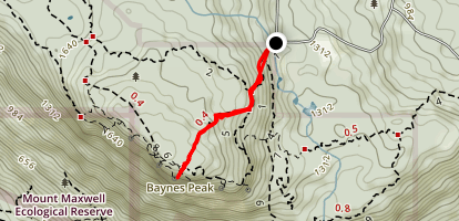Baynes Peak via Mountain Trail Map