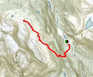 Iceline Trail Map