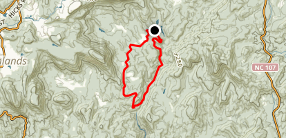 Chattooga Loop from Whiteside Cove Trailhead Map