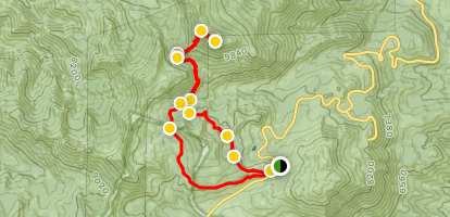 Mount Rose Trail Map