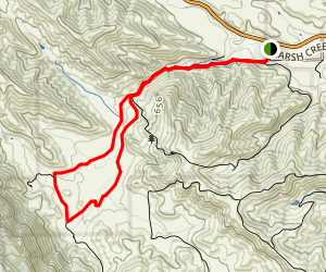 Murphy Meadow and Miwok Trail Loop Map