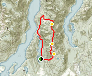 Dilly Dally Loop Map