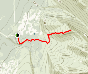 Near Point from Basher Map