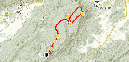 Starr Mountain Trail Map