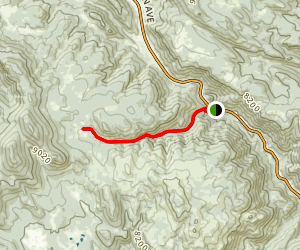 Lion Gulch Trail Map