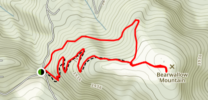Bearwallow Mountain Trail Map