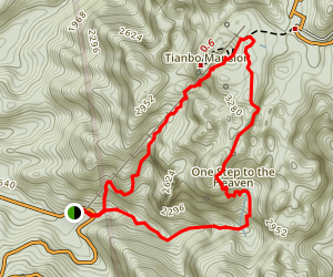 Wulong Loop Map