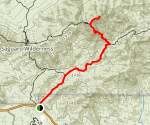 Wasson Peak via Hugh Norris and King Canyon Trails Map