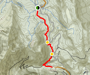 Lame Horse Trail Map