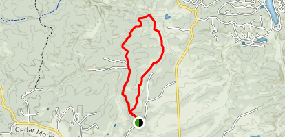Womens Forest Loop Map