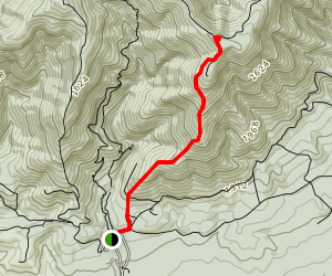 Mount Thomas Summit Track Map