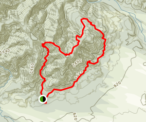 Mount Thomas Saddle Track Map