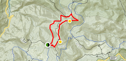 Ivestor Gap Trail to Tennent Mountain and Black Balsam Knob Trail Map