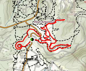 Maple, Overlook, Hawthorn and Walnut Loop Map