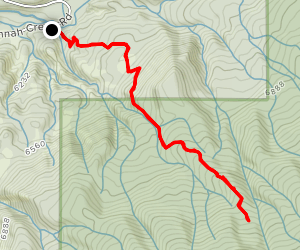 Spring Camp Trail Map