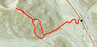 Odlum Ridge Map