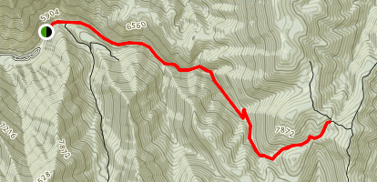 Maple Canyon Left Fork Trail Map