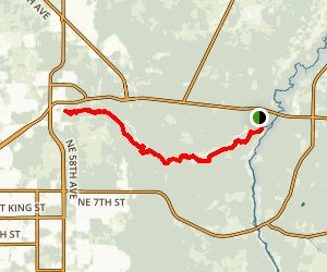 Silver River Paddle to Silver Springs  Map