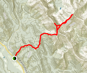 Serendipity and Patterson's Peaks Map