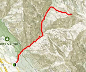Cougar Peak Map