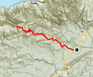 Awa'awapuhi Trail Map