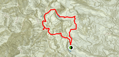 Naomi Passage Loop Map