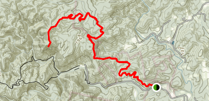 Chestnut Knob Map