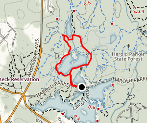 Collins Pond, Brackett Pond, and Delano Pond Map