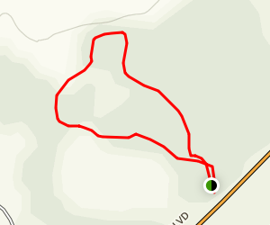 Newnans Lake State Forest West Trail Map