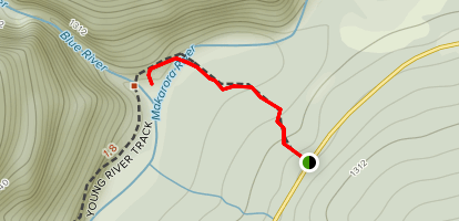 Blue Pools (Haast Pass) Track Map