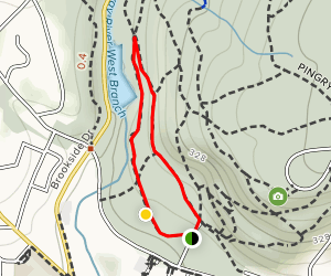 Railway and Maple Falls Trail Loop Map