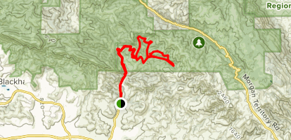Old Finley Rd, Sulphur Springs Trail, Jerimiah, Grizzly, Black Hills Trail to Sulphur Springs Trail  Map