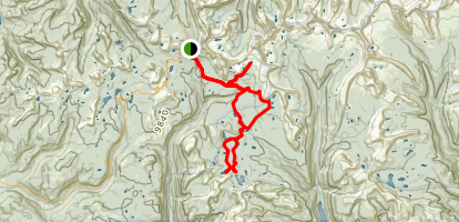 Highline Trailhead Loop - Naturalist, Four Lakes and Grandaddy Basins Map