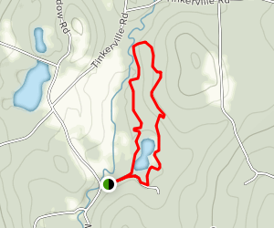 Taylor Pond Trail Map