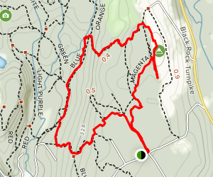 Magenta Trail to Flirt Hill to Blue Trail Loop Map