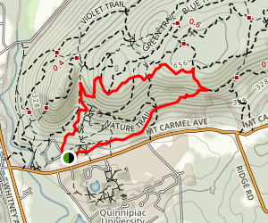White Trail to Yellow Trail Loop Map